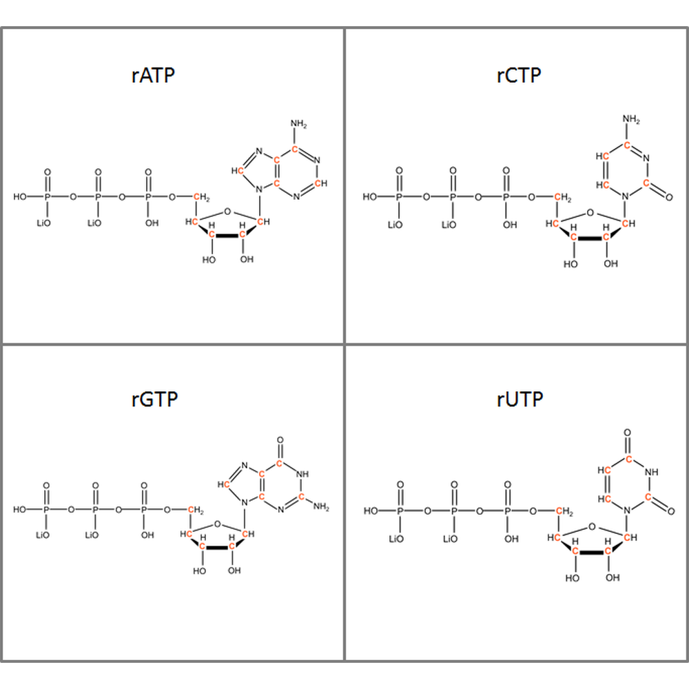 Set of 13C-labeled rNTPs,  4x50mg