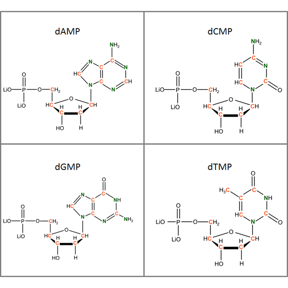 Set of 13C15N-labeled  dNMPs, 4x10mg