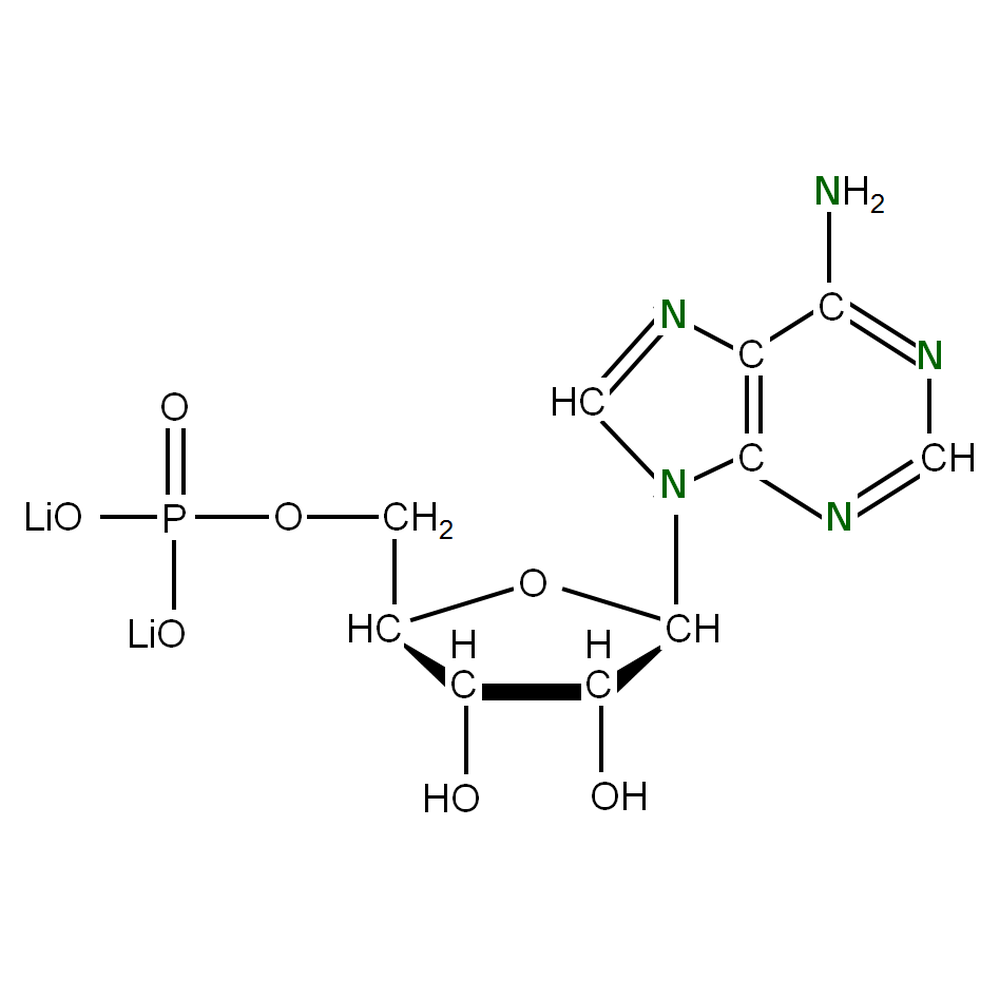 15N-labelled rAMP