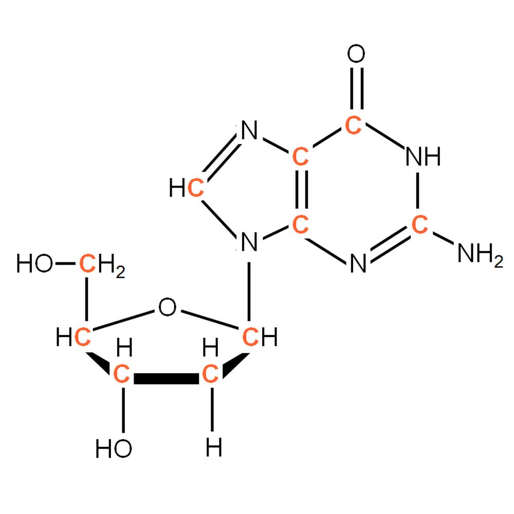 13C-labelled dG