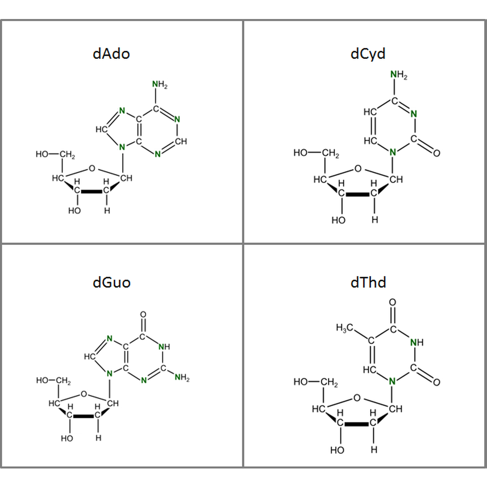 Set of 15N-labeled dNs,  4x10mg
