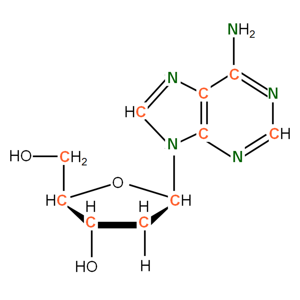 13C15N-labelled dA