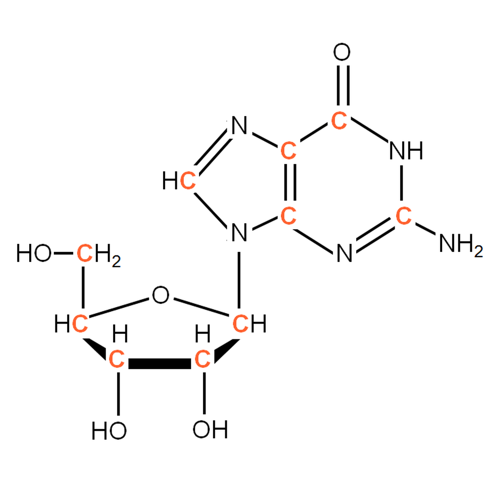 13C-labelled rG