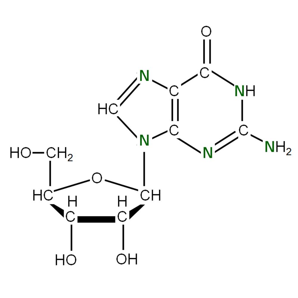 15N-labelled rG