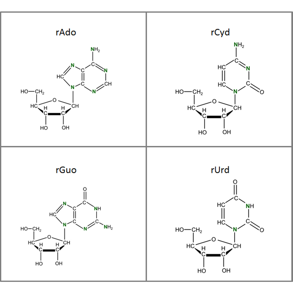 Set of 15N-labeled rNs,  4x10mg