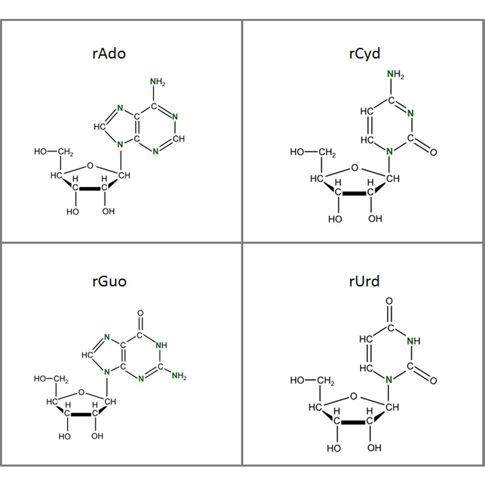 Set of 15N-labeled rNs,  4x50mg
