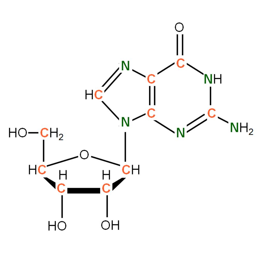 13C15N-labelled rG