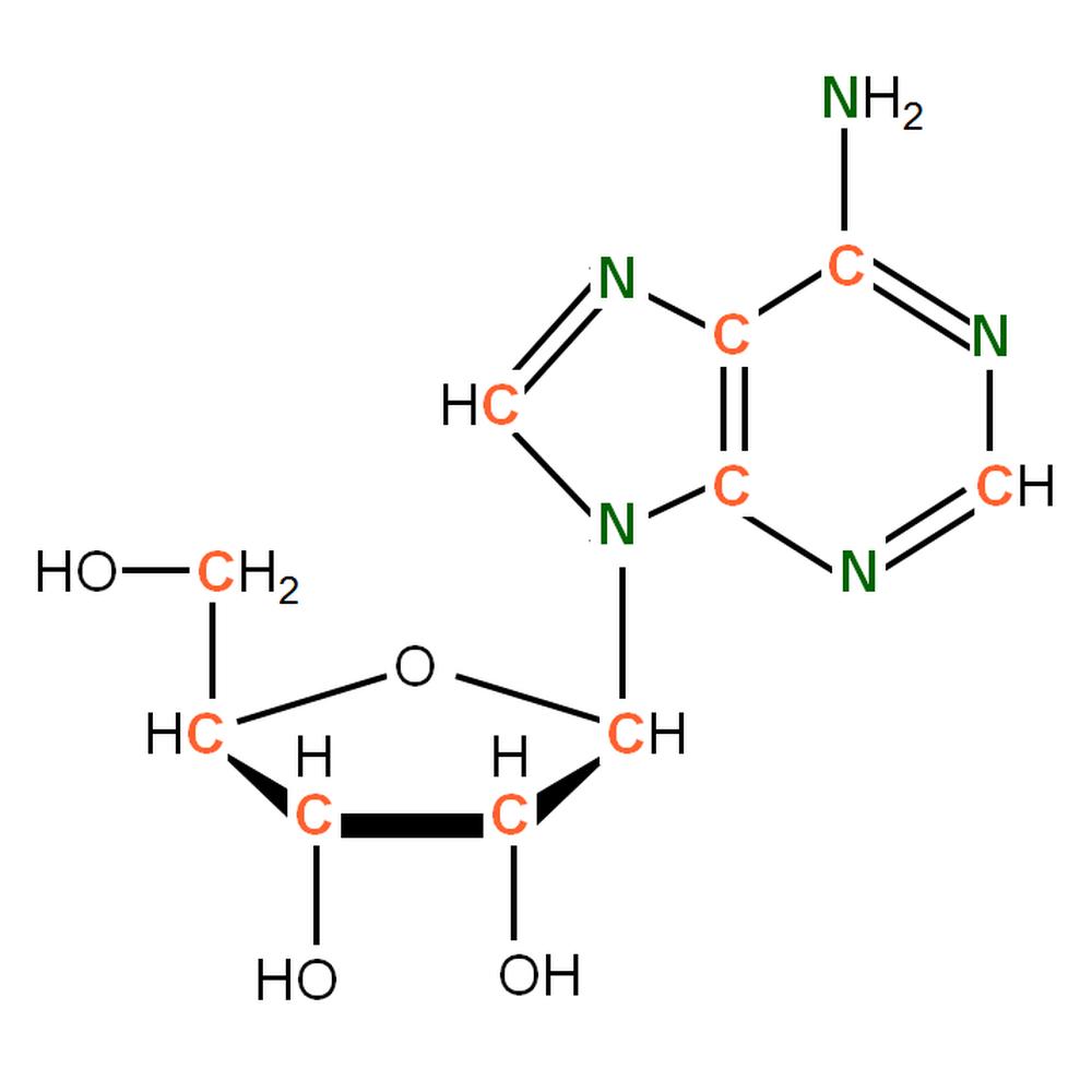13C15N-labelled rA