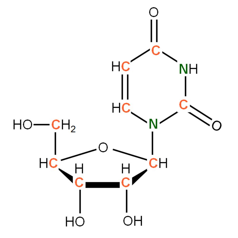 13C15N-labelled rU