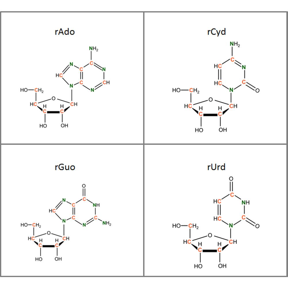 Set of 13C15N-labeled rNs,  4x10mg