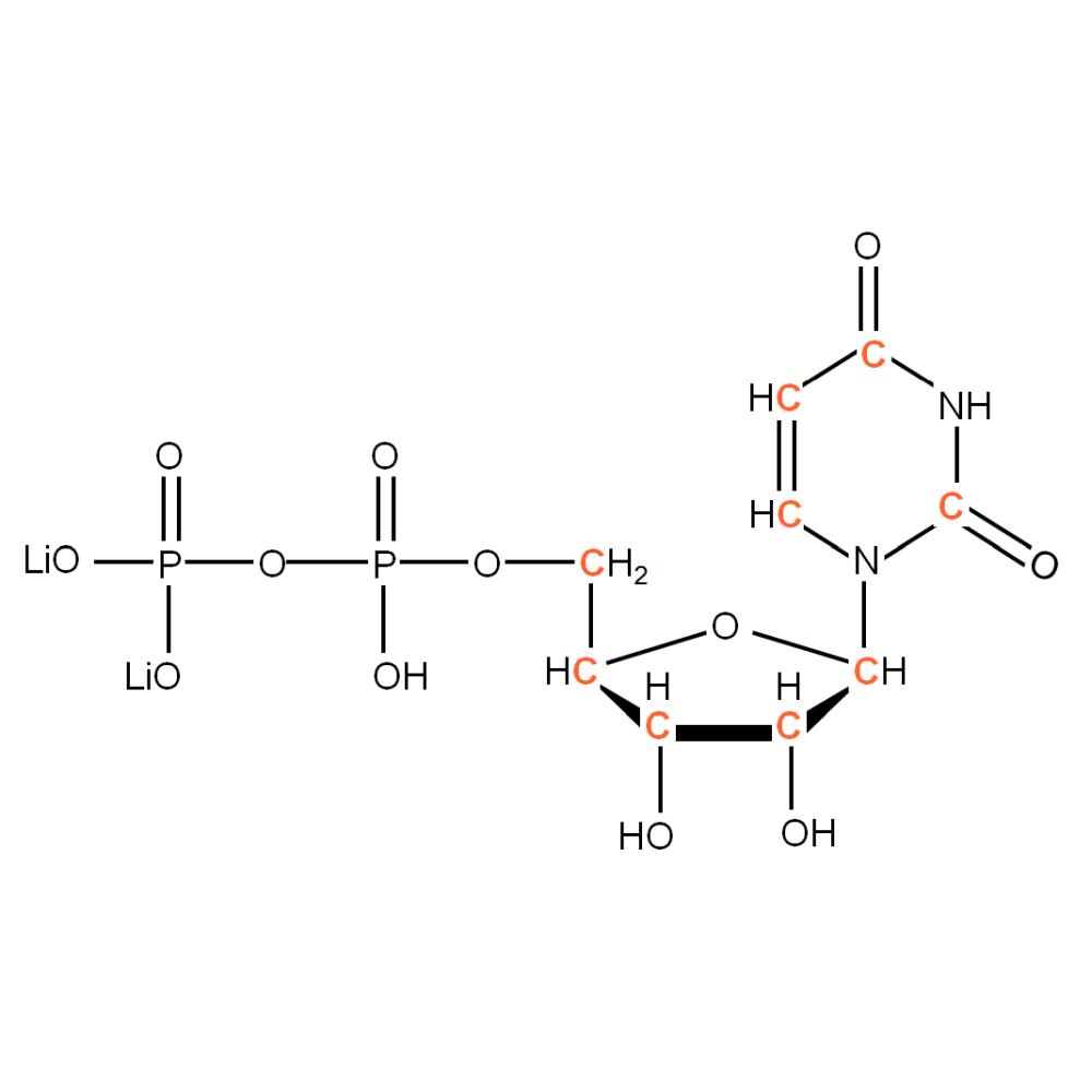 13C-labelled rUDP