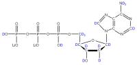 2H Deoxyadenosine 5'- triphosphate lithium salt  solution