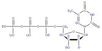 2H Thymidine 5'-triphosphate  lithium salt solution