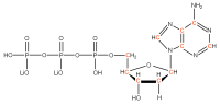 13C Deoxyadenosine 5'- triphosphate