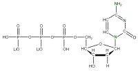 15N Deoxycytidine 5'- triphosphate lithium salt  solution