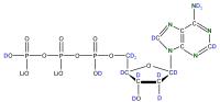 2H 15N Deoxyadenosine 5'- triphosphate lithium salt  solution