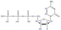 2H 15N Deoxycytidine 5'- triphosphate lithium salt  solution