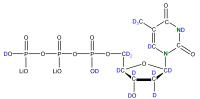 2H 15N Thymidine 5'- triphosphate