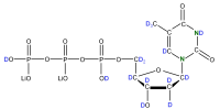2H 15N Thymidine 5'- triphosphate lithium salt  solution