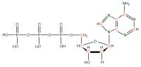 13C 15N Deoxyadenosine  5'-triphosphate lithium salt  solution