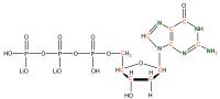 13C 15N Deoxyguanosine  5'-triphosphate lithium salt  solution