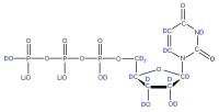 2H Uridine 5'-triphosphate  lithium salt solution