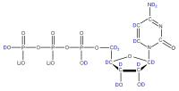 2H Cytidine 5'-triphosphate  lithium salt solution