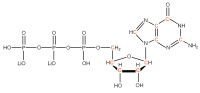 13C Guanosine 5'- triphosphate lithium salt  solution