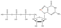 13C8 Guanosine 5'- triphosphate lithium salt  solution