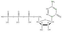 15N Cytidine 5'-triphosphate  lithium salt solution