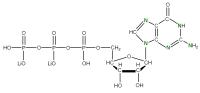 15N Guanosine 5'- triphosphate lithium salt  solution