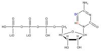 2H5 13C6 Cytidine 5'- triphosphate  lithium salt solution