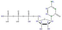 2H 15N Cytidine 5'- triphosphate lithium salt  solution