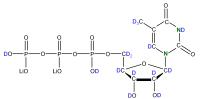 2H 15N Uridine 5'- triphosphate lithium salt  solution