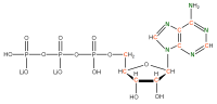 13C 15N Adenosine 5'- triphosphate lithium salt  solution