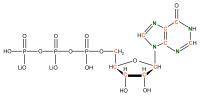 13C 15N Inosine 5'- triphosphate lithium salt  solution