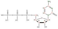 13C 15N Cytidine 5'- triphosphate lithium salt  solution