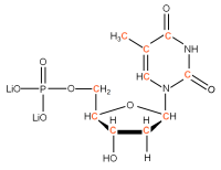 13C Deoxyuridine 5'- monophosphate