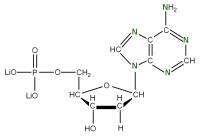 15N Deoxyadenosine 5'- monophosphate