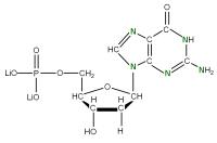 15N Deoxyguanosine 5'- monophosphate