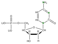 15N Deoxycytidine 5'- monophosphate