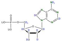 2H 15N Deoxyadenosine  5'-monophosphate