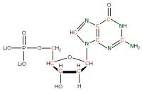 13C 15N Deoxyguanosine  5'-monophosphate