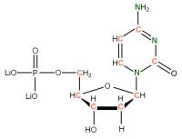 13C 15N Deoxycytidine 5'- monophosphate