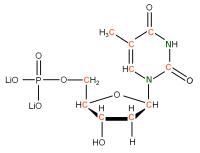 13C 15N Thymidine 5'- monophosphate