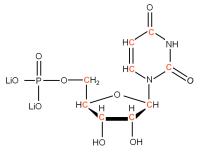 13C Uridine 5'- monophosphate lithium salt  solution
