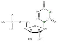 15N Uridine 5'- monophosphate  lithium salt solution