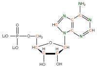 13C 15N Adenosine 5'- monophosphate lithium salt  solution
