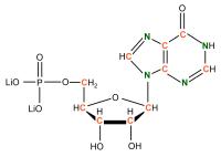 13C 15N Inosine 5'- monophosphate solution