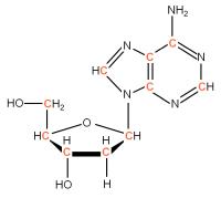 U-13C Deoxyriboadenosine  powder